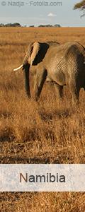 Reisen nach Namibia buchen