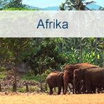 Reisen nach Afrika