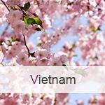Reisen nach Vietnam